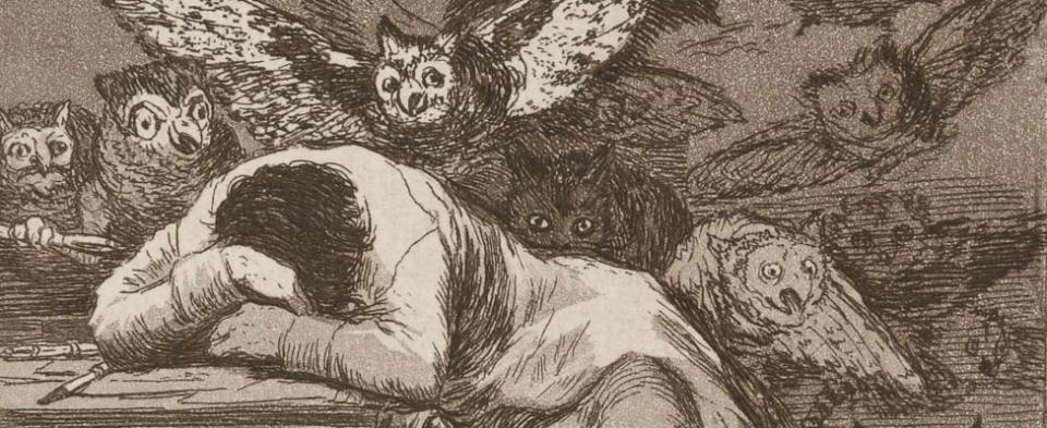 """""""Le sommeil de la raison engendre les monstres"""" (Francisco Goya)"""